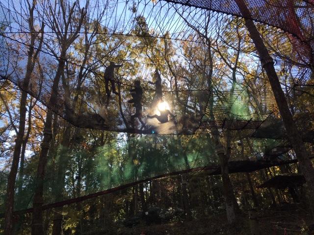 第3回 パパ子でパカブ!~日本でここだけ!森の空中遊び~