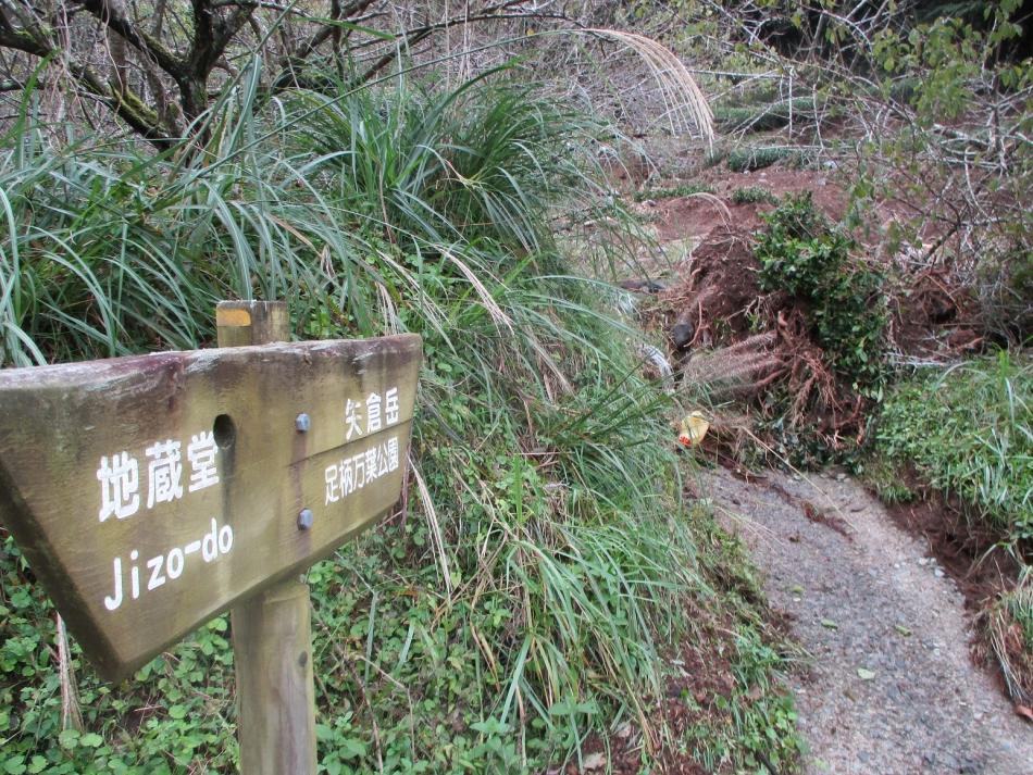 ハイキングコースの被害の状況①
