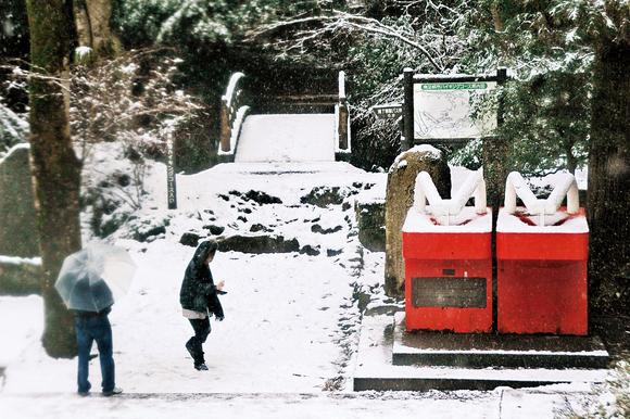 平成23年度南足柄市の観光写真コンクール特選作品