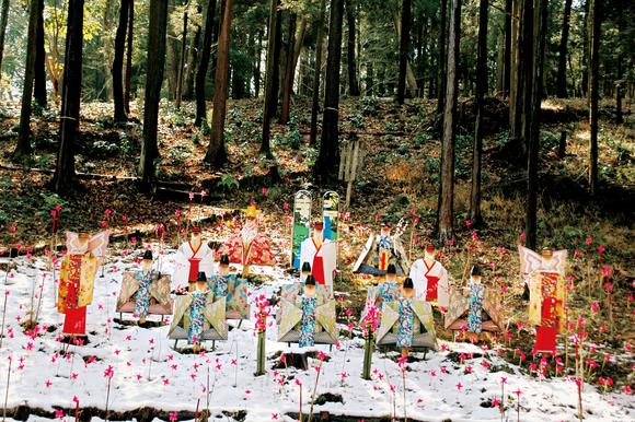 平成23年度南足柄市の観光写真コンクール特別賞作品