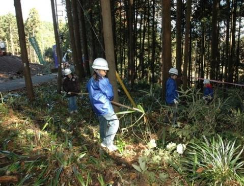 ボランティア会員と市民の協働による森林整備の様子