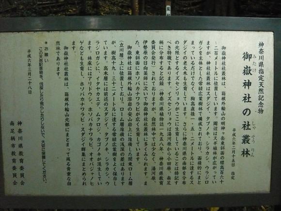 御嶽神社の社叢林説明板