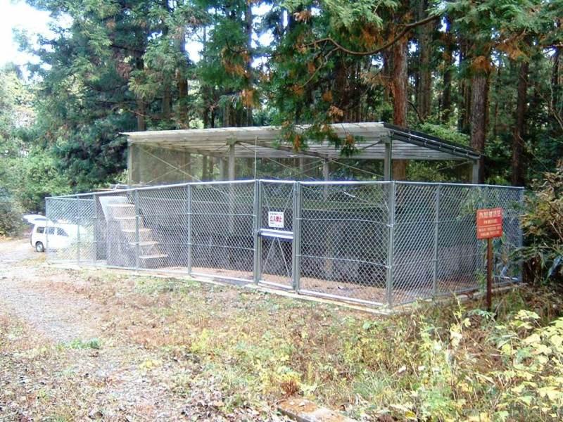 丸太の森浄水池(まるたのもりじょうすいち)