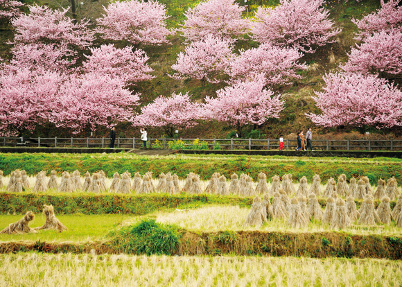 「春の訪れ」