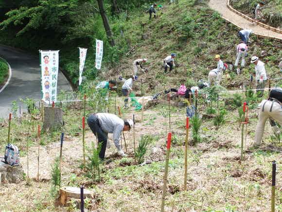 平成23年6月4日(土) 第3回 南足柄市民植樹祭