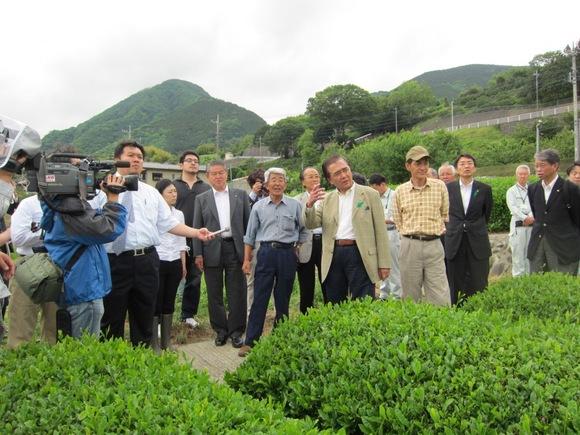 平成23年5月22日(日) 黒岩知事による市内茶畑視察
