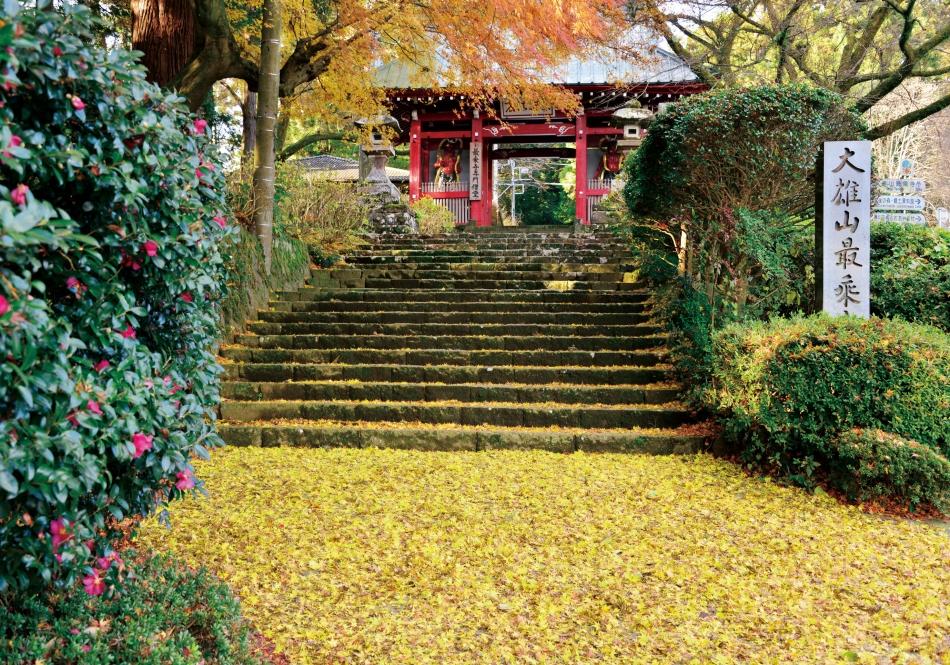 「仁王門に続く紅葉の絨毯」