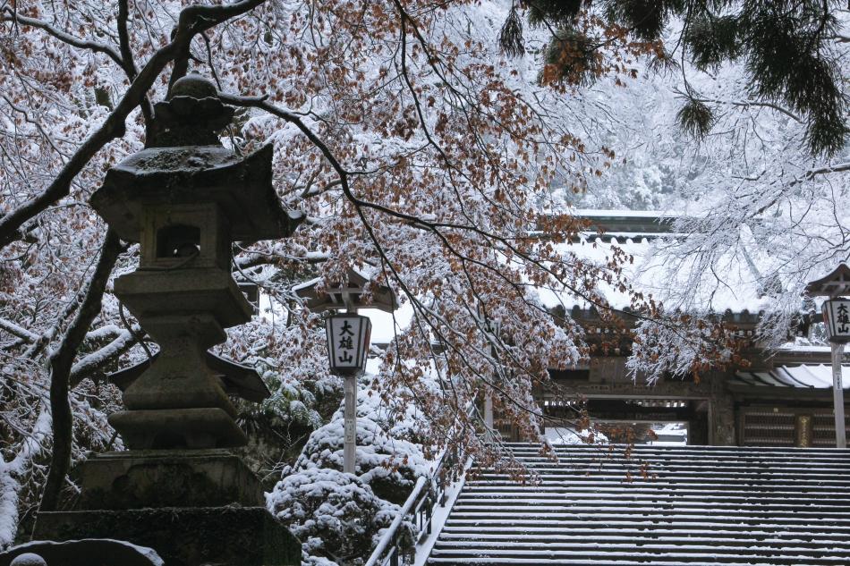 「残秋の雪景色」