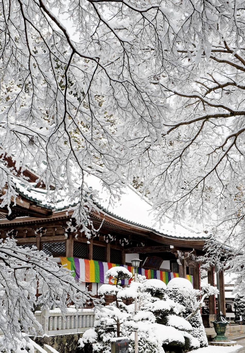 「雪の本堂」