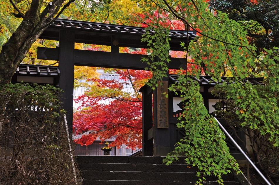 「秋信の門」