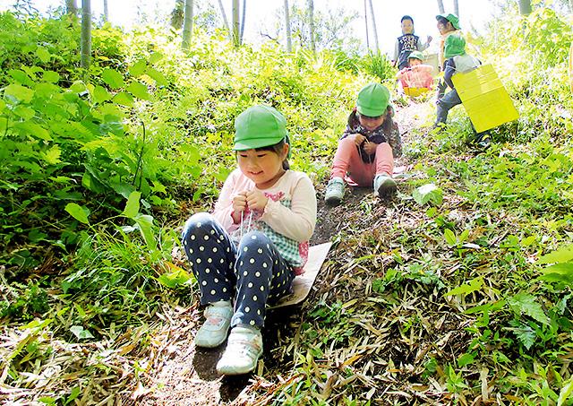 幼稚園・保育施設での自然体験
