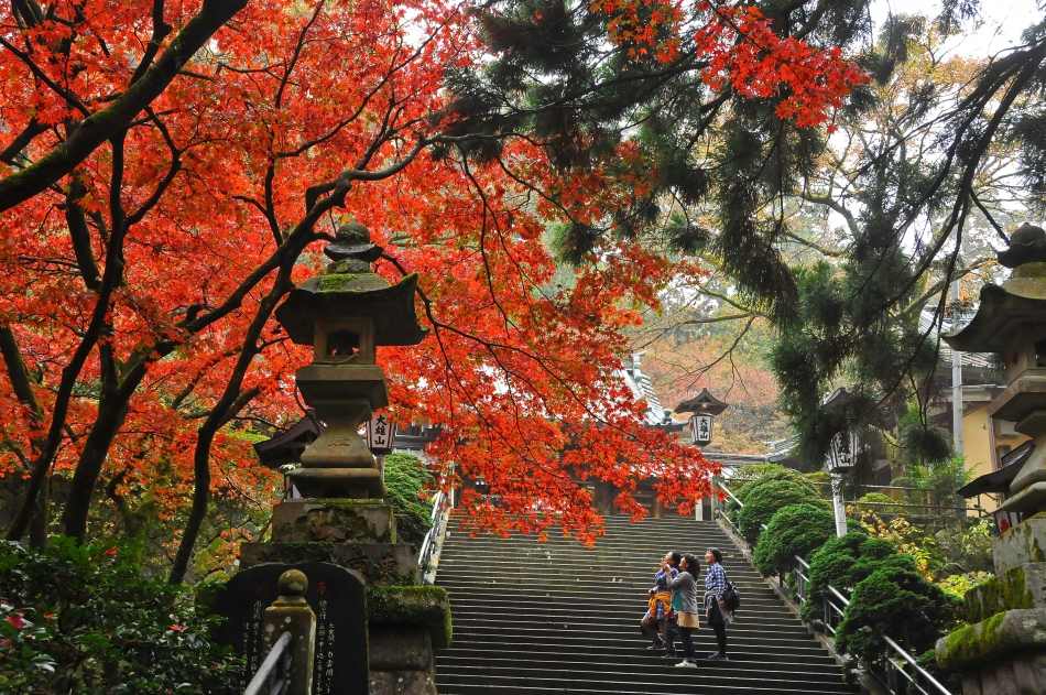 「秋に喜び」