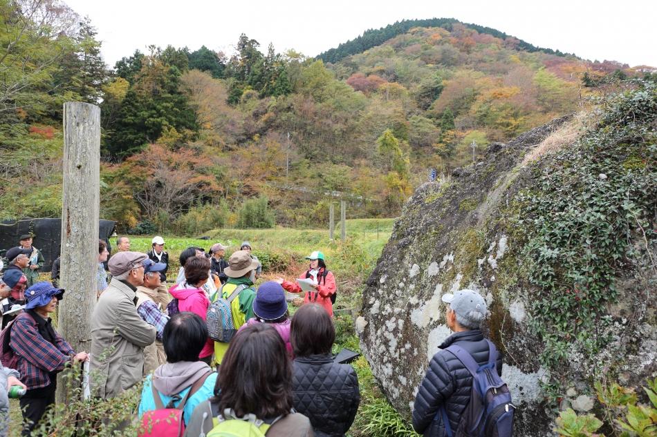 金太郎の遊び石