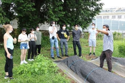 オリーブ畑で説明する加藤かいさん(右)