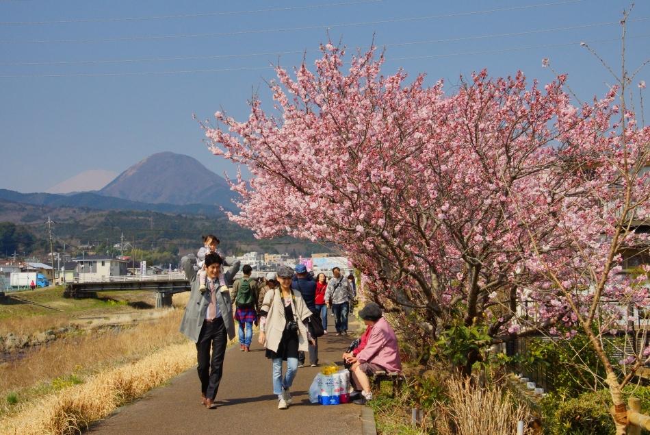 平成29年度観光写真コンクール受賞作品