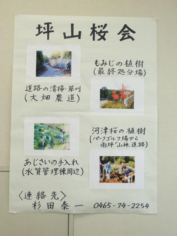 7 坪山桜会
