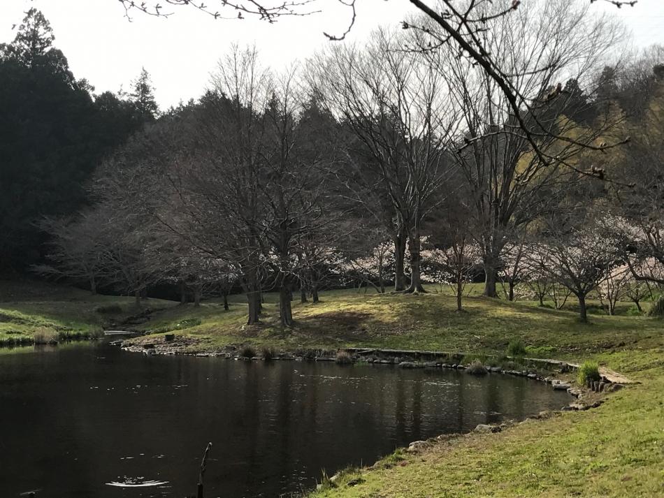 森と水の公園