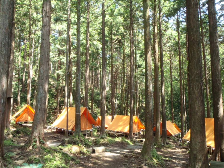 丸太の森テントサイト画像